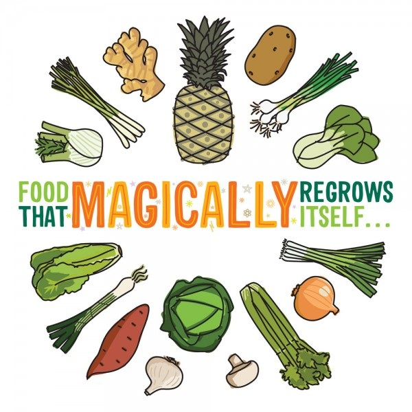 Food-That-Magically-Regrows-Itself-1000x1000-600x600.jpg