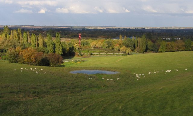 Sheep_in_Campbell_Park_-_geograph.org.uk_-_5151.jpg